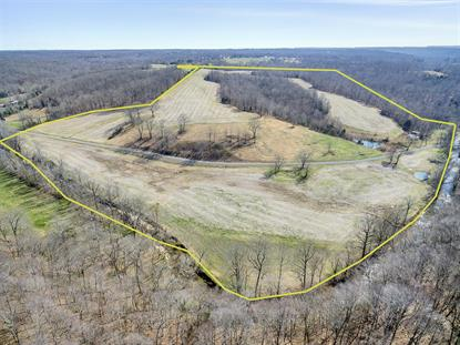 3887 Abednego Rd Springfield, TN MLS# 1759977