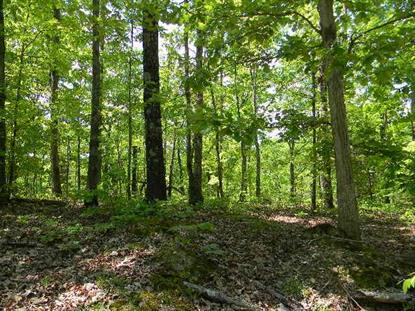 0 Old State Rt 1 N Of New Johnsonville, TN MLS# 1797225