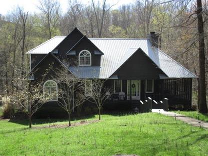 59 Long Point Dr Rock Island, TN MLS# 1811830