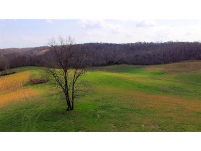 0 Pleasant Hill Rd, Lynchburg, TN