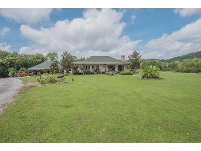 250 Gatemouth Ln Auburntown, TN MLS# 1857138