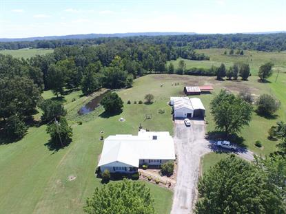 4985 Old State Route 1 New Johnsonville, TN MLS# 1859187