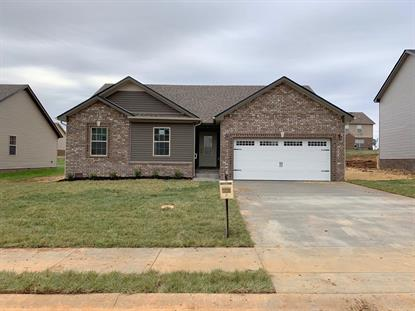 235 Autumn Creek, Clarksville, TN