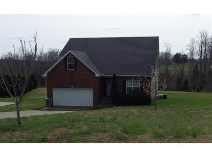 184 Tweedy Rd, Ashland City, TN