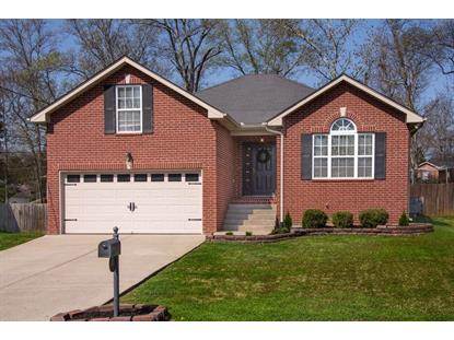 417 Anthony Branch Dr, Mount Juliet, TN