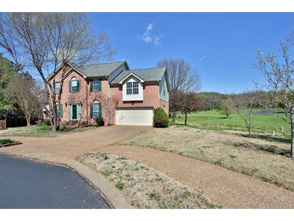 117 Golden Meadow Ln, Franklin, TN