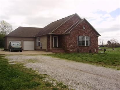 216 McKenzie Ln, Summertown, TN