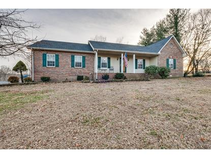 203 Link Rd, Cottontown, TN