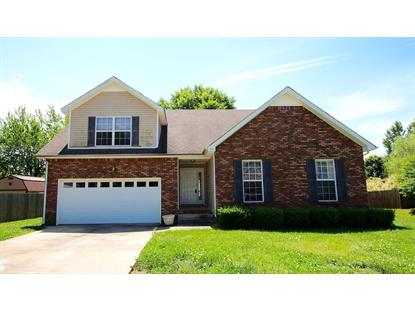 746 Ellie Nat, Clarksville, TN