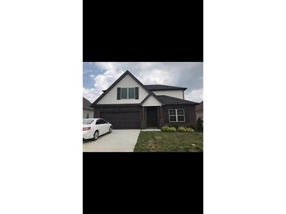 4343 Freemark Dr, Smyrna, TN