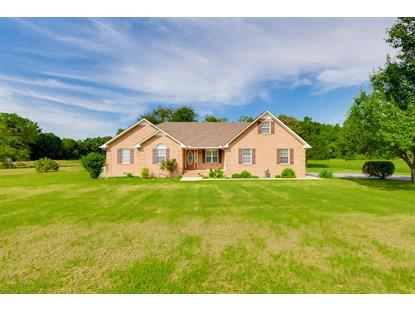 1260 Love Lane Rd, Hillsboro, TN