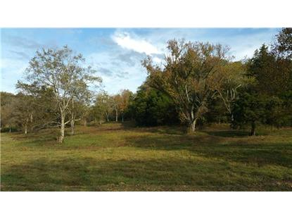 3980 Burwood Pl Pvt Dr - Lot 3 Thompsons Station, TN MLS# 1992501