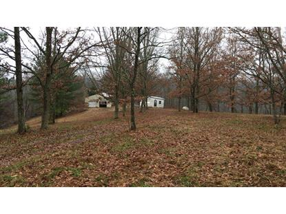 827 Petty Hollow Rd Prospect, TN MLS# 1999386