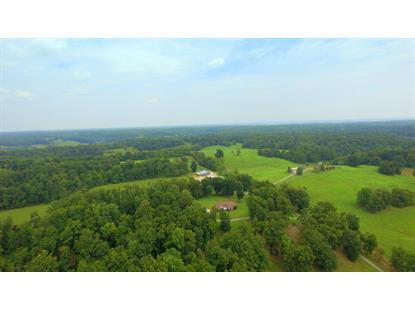 1910 Smith Hollow Rd Lynnville, TN MLS# 2003455