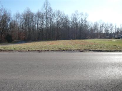 0 Chestnut Ridge Rd  Lynchburg, TN MLS# 2108122