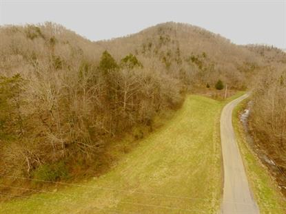 532 ac. Wet Mill Creek Rd  Celina, TN MLS# 2143475