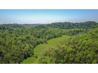 453 Herring Hollow Ln  Gainesboro, TN MLS# 2151090