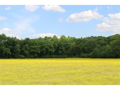 1174 Street Road  Kingston Springs, TN MLS# 2152714