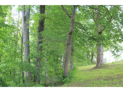 0 Riley Creek Road  Whitleyville, TN MLS# 2156165