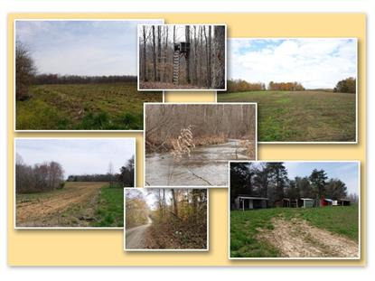 627 .50ac Barnes Road  Whitleyville, TN MLS# 2161318