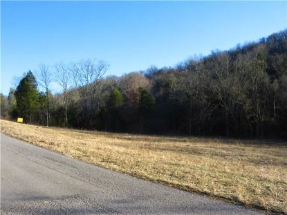 0 Spankem Rd  Lynchburg, TN MLS# 2172862