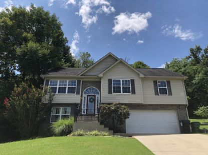 207 Saint Martins Ln  Smyrna, TN MLS# 2173296