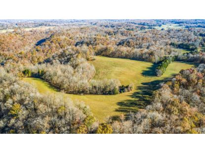 1885 Griffintown Rd  Sparta, TN MLS# 2173736