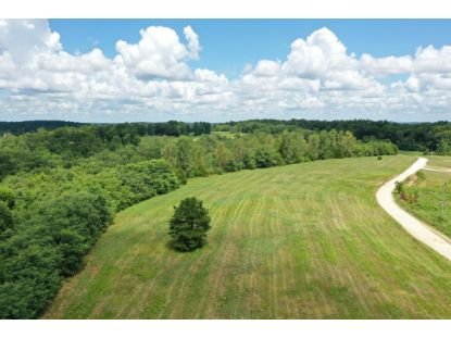 0 Highway 641 S Bath Springs, TN MLS# 2178962