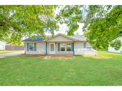 118 Clinch Dr  Columbia, TN MLS# 2179529