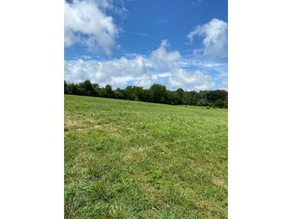 0 Spring Valley Rd  Mc Minnville, TN MLS# 2180168