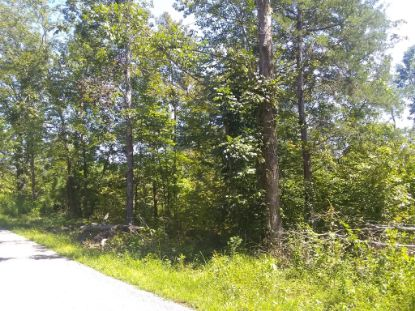 3730 Mouse Tail Rd  Parsons, TN MLS# 2180536