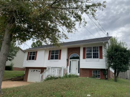 423 Bradford Circle  Columbia, TN MLS# 2192056