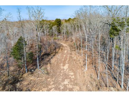 0 Joe Yarbro Rd  Decaturville, TN MLS# 2214513