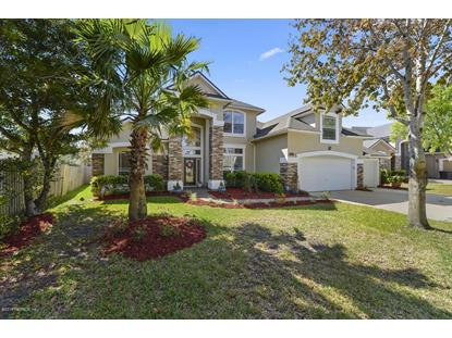 3905 DEERTREE HILLS DR, Orange Park, FL