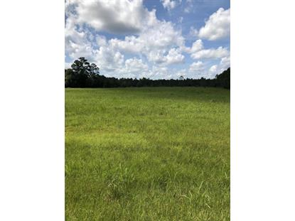 0 NW COUNTY ROAD 125  Lawtey, FL MLS# 944860