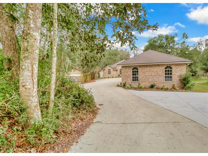 2361 SANDY RUN DR N Middleburg, FL MLS# 974542