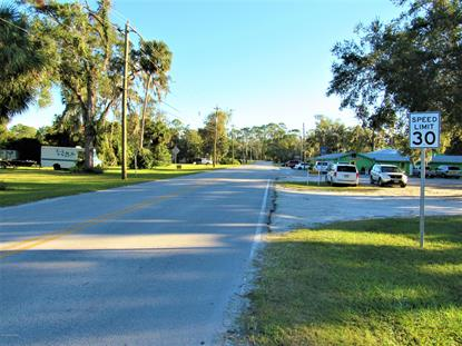 0 UNASSIGNED AVE Welaka, FL MLS# 987642