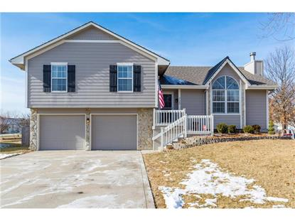 720 MEADOW Lane, Raymore, MO