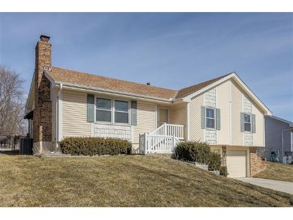 28 NW 101st Terrace Kansas City, MO MLS# 2303314