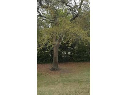 19 (Lot 2) Yaupon Way, Oak Island, NC