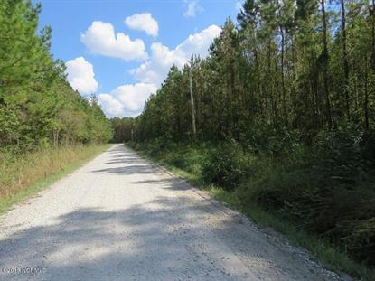 18218 7 Creeks Highway, Tabor City, NC