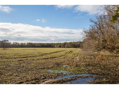 0 Rocky Run Road Jacksonville, NC MLS# 100149259