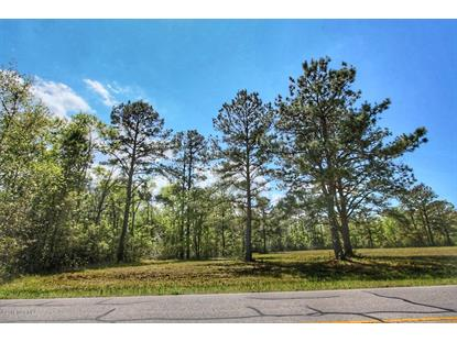 103.95acre Swamp Fox Highway E Tabor City, NC MLS# 100167530