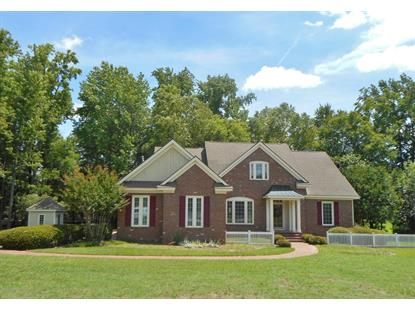 113 Southwick Court Rocky Mount, NC MLS# 100171282