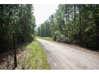 12.66 Ac Diamondback Trail Burgaw, NC MLS# 100237732