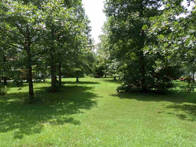 1250 COUNTY ROAD 642, Cedar Bluff, AL 35959 - Image 1
