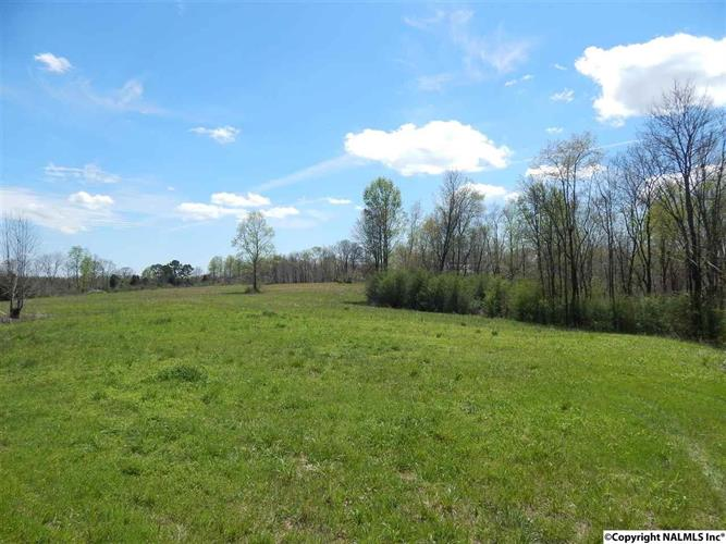 000 COUNTY ROAD 8, Killen, AL 35645