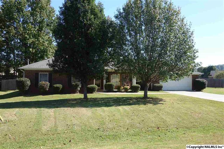 117 CORIANDER LANE, Harvest, AL 35749