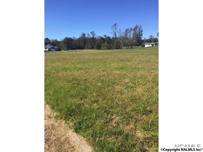 LOT 41 SAINT MICHAEL WAY, Hanceville, AL 35077