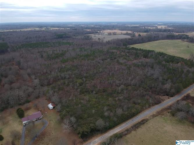 1255 COUNTY ROAD 455, Boaz, AL 35957 - Image 1